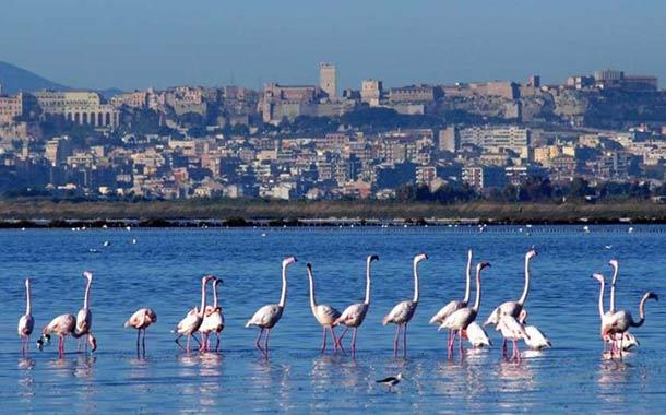Cagliari - Sardunya Limanı