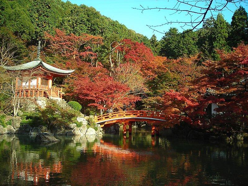 Kyoto Limanı